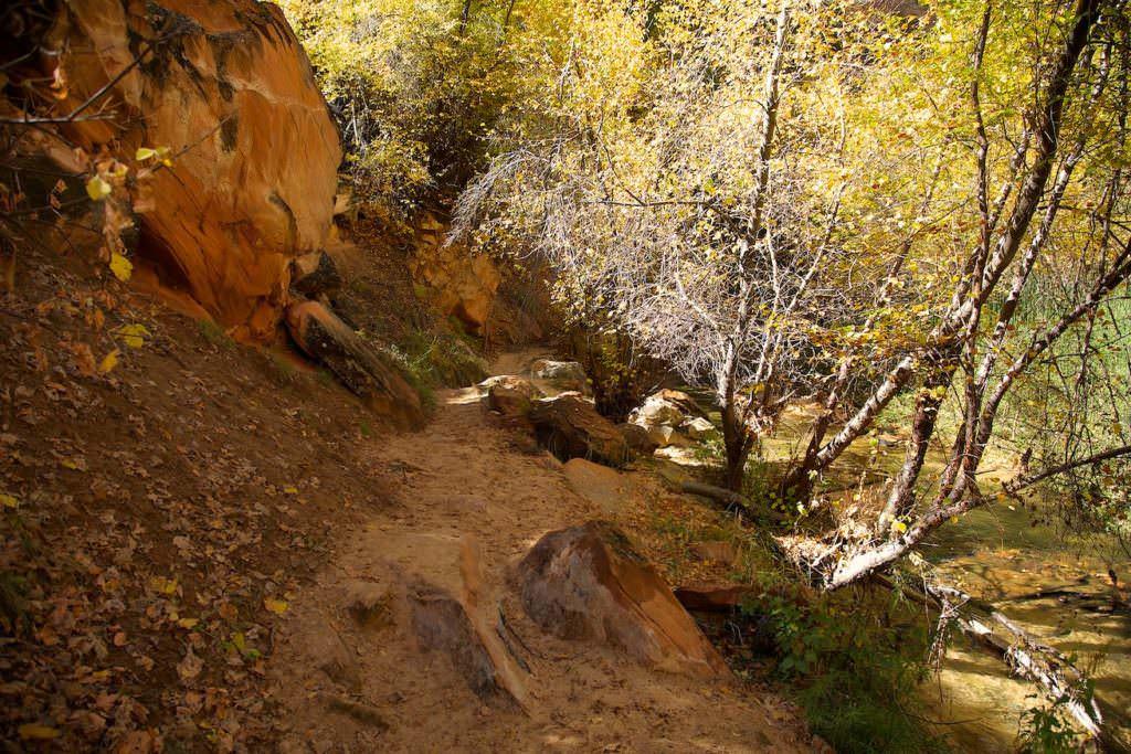 Lower Calf Creek Fall