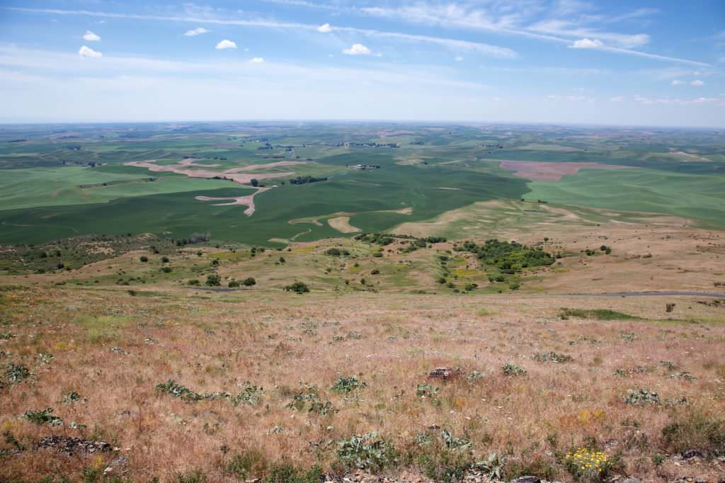 Steptoe Butte SP
